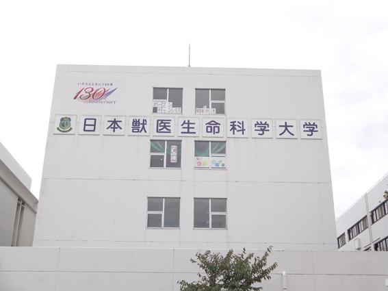 日本獣医生命科学大学外観